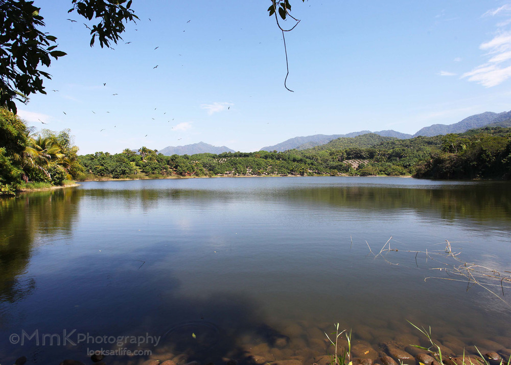 Lake Walk05.jpg