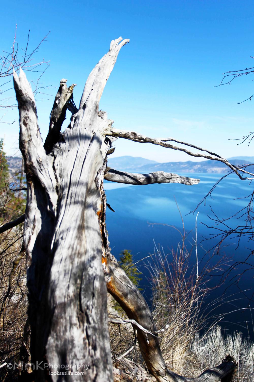 okanagan lake 2