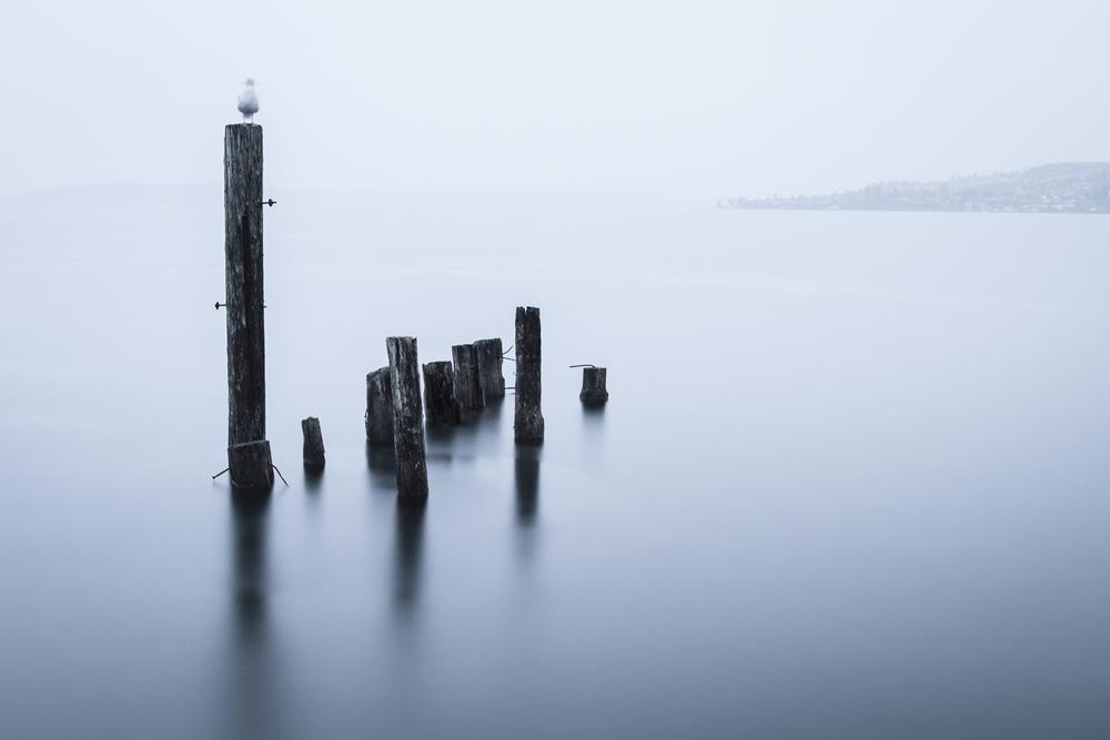 Seattle_2014-06.jpg