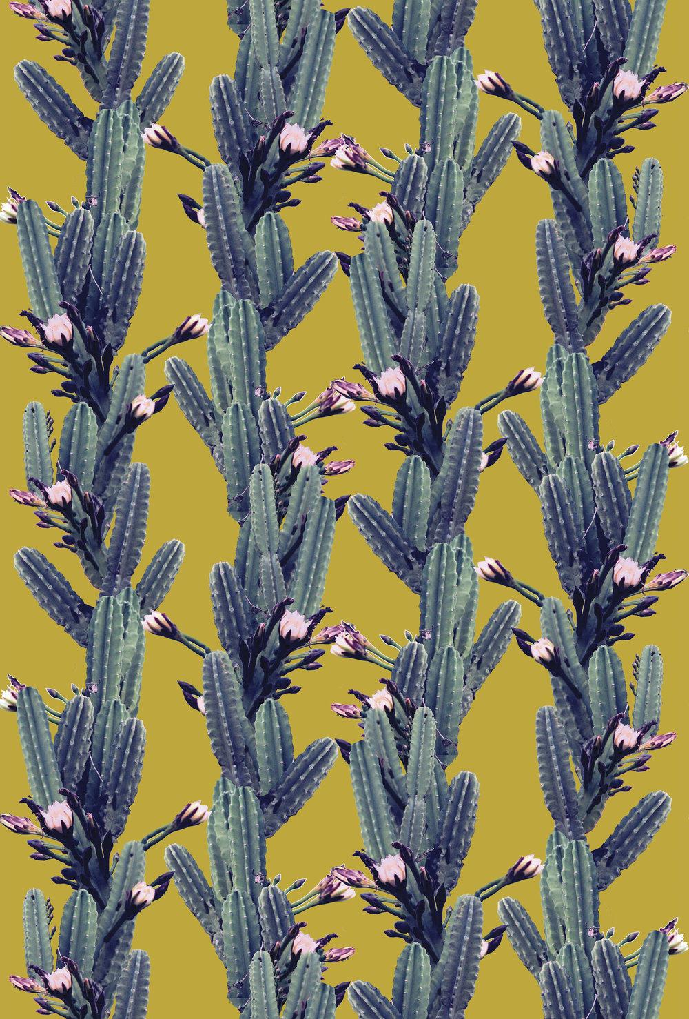 Cactus_Print_03.jpg