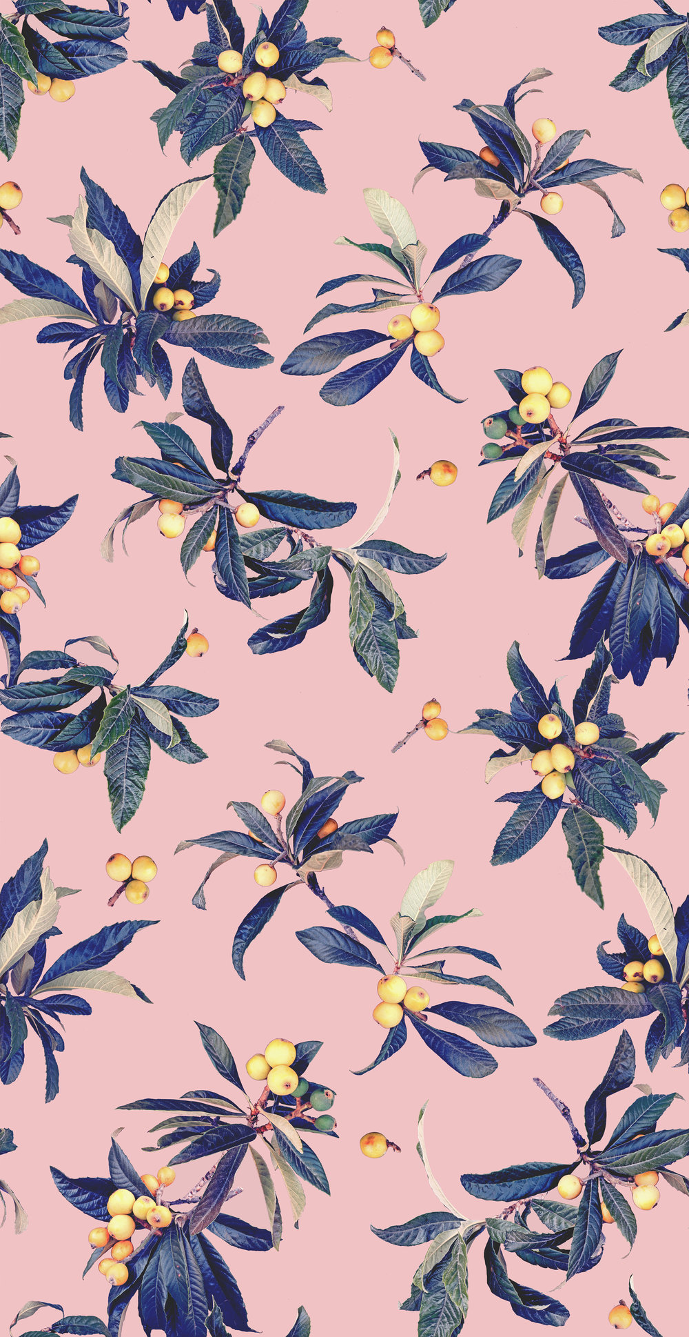 Loquat_Love_TILE_FINAL_pink_02_WEB.jpg
