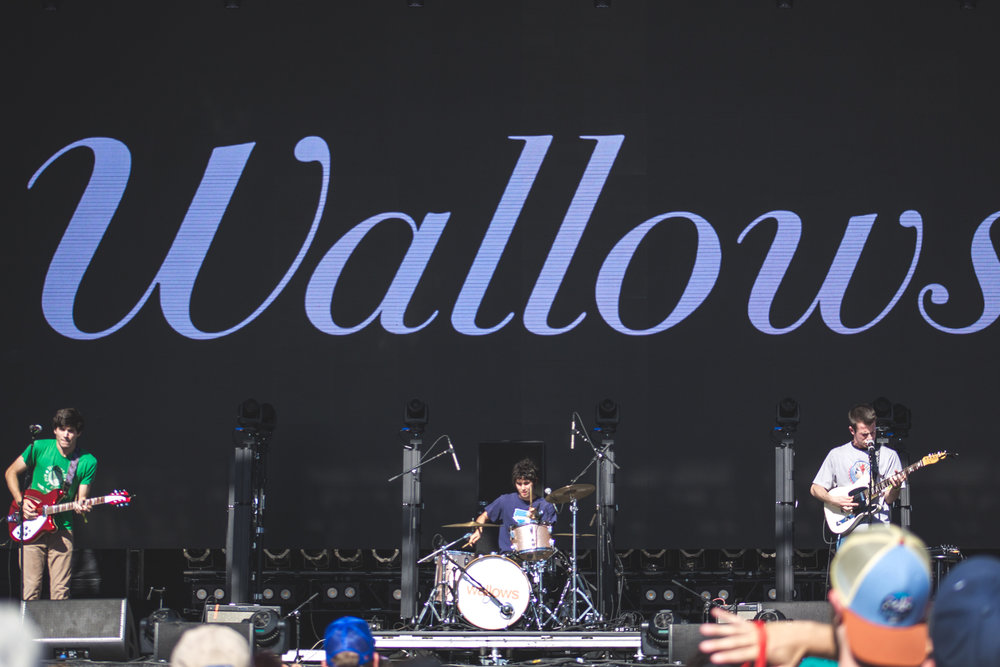 wallows_web12.jpg