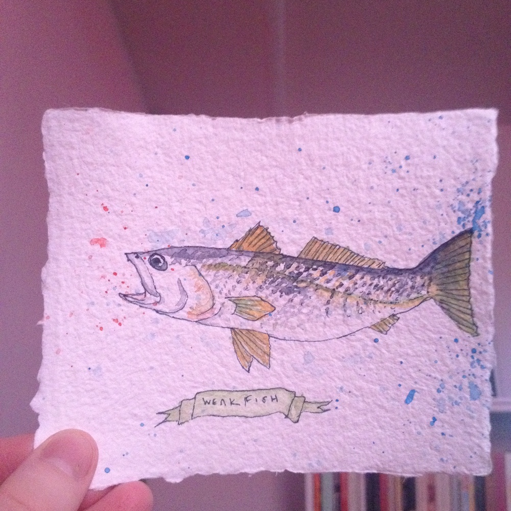 Made for a fishmonger friend whose favorite fish is this.