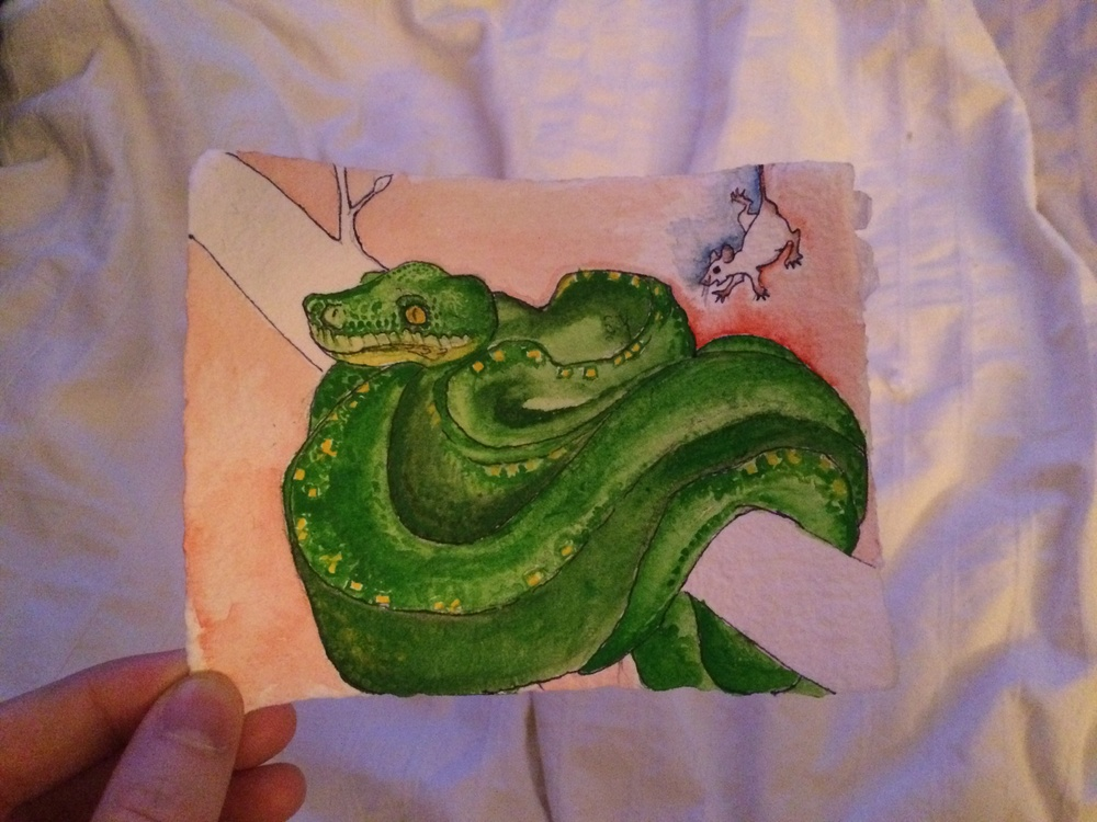 """An Emerald Python, my favorite snake species. This one is entitled """"Mommy, will I die one day like you will?"""