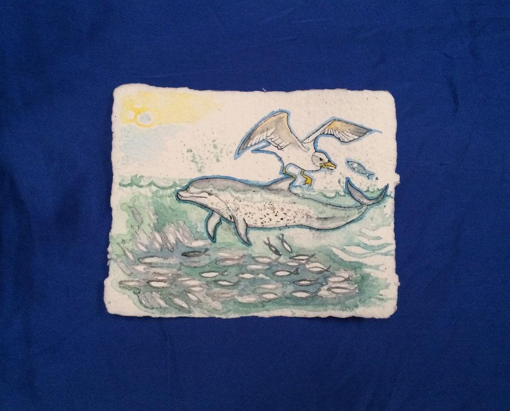 Juvenile Dolphin, Albatross, School of Fish, Relationship