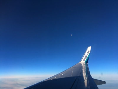 WestJet_wing_Feb1517.jpg