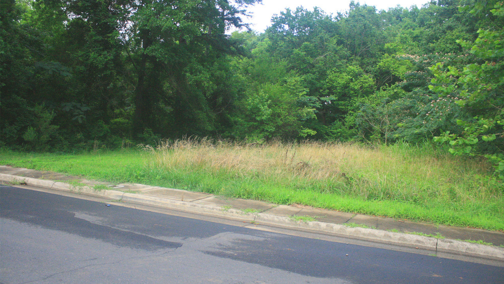 Before: Vacant neighborhood lot in Reid Park