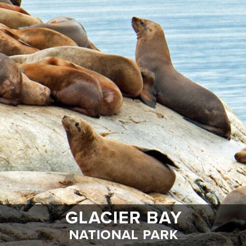 thumb_GlacierBay.jpg