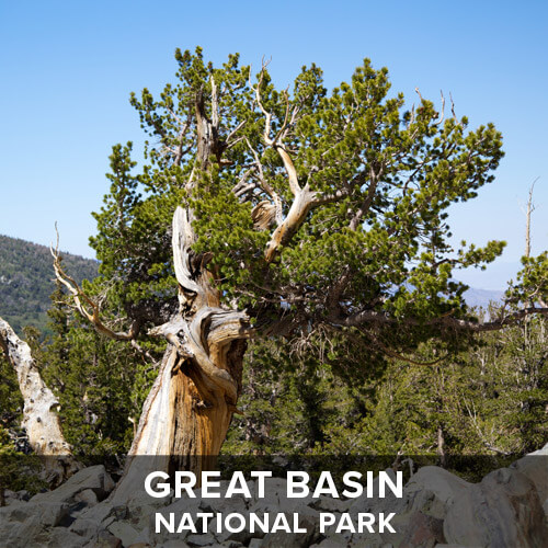 thumb_GreatBasin.jpg