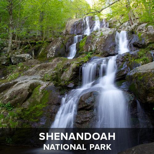 thumb_Shenandoah.jpg