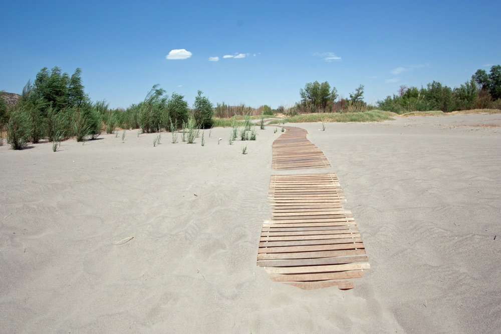 Boardwalk along the sandy shores of the Rio Grande