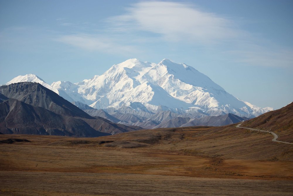 The road to Denali.