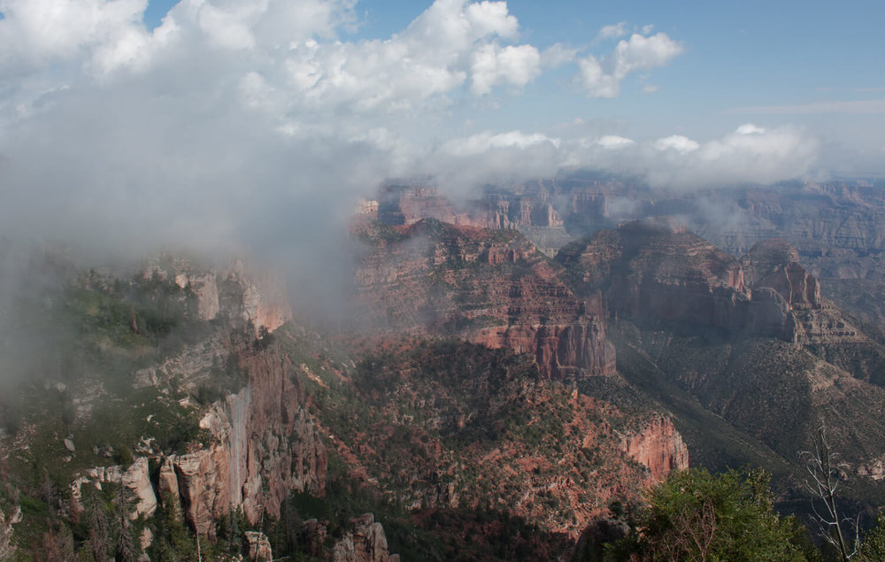 Foggy morning on the North Rim