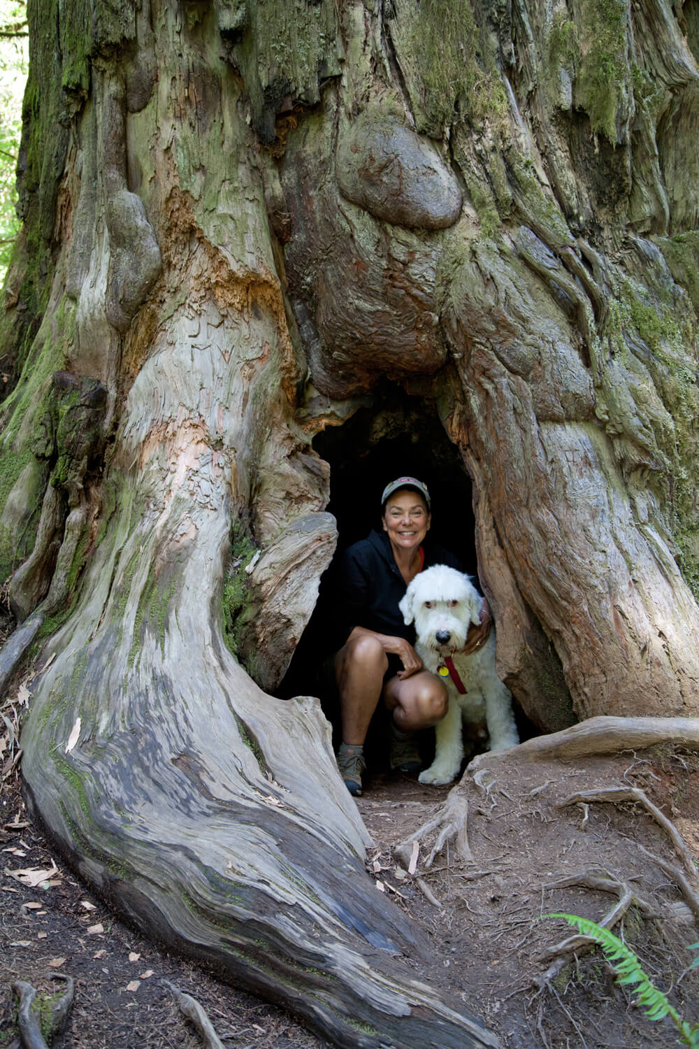 Terry and CharlieDog hanging out in the hollows of the forest.