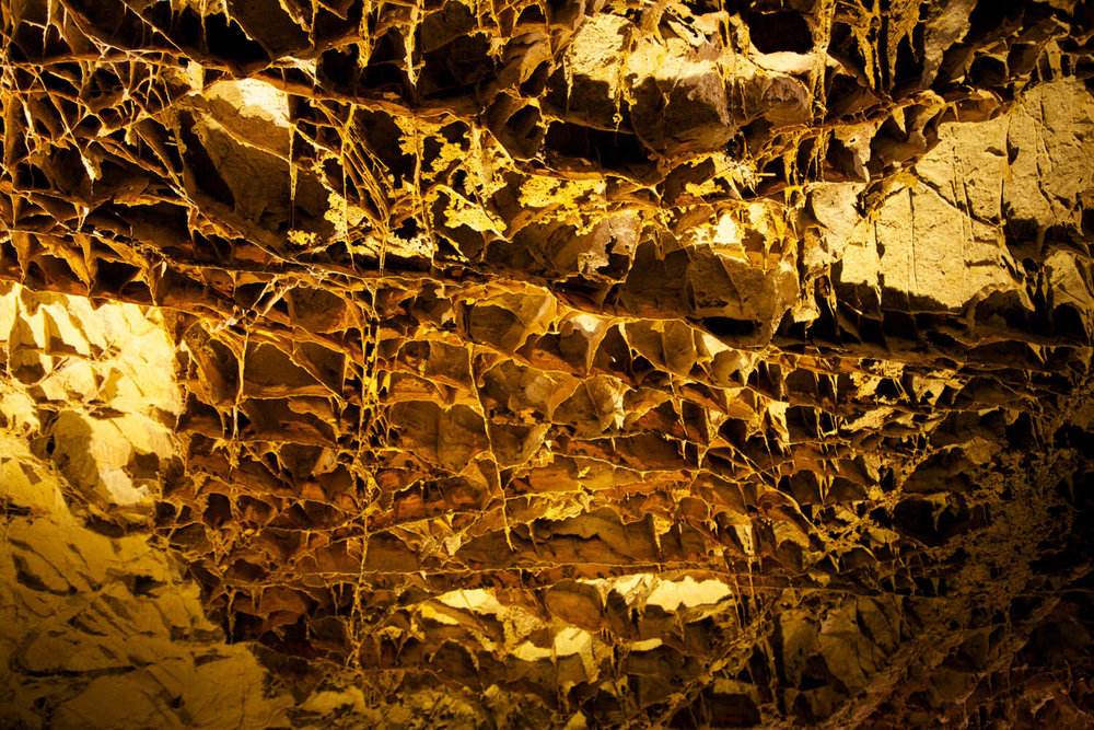 The Boxwork formation sets Wind Cave apart from other cave systems.