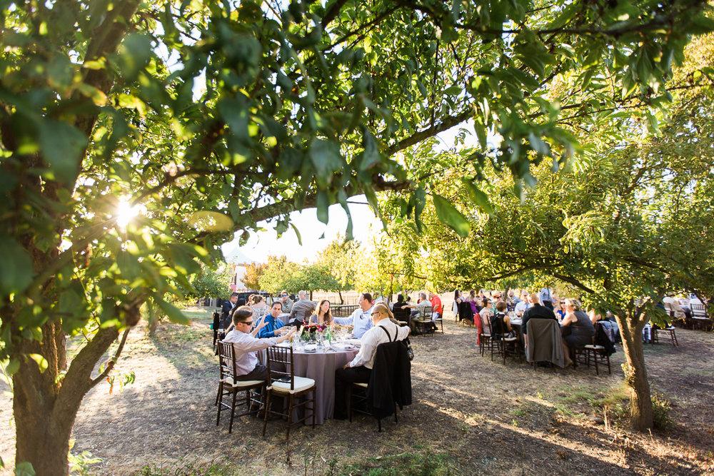 Sweet_Lane_Gardens_French_Themed_Wedding_Maria_Villano_Photography-101.jpg