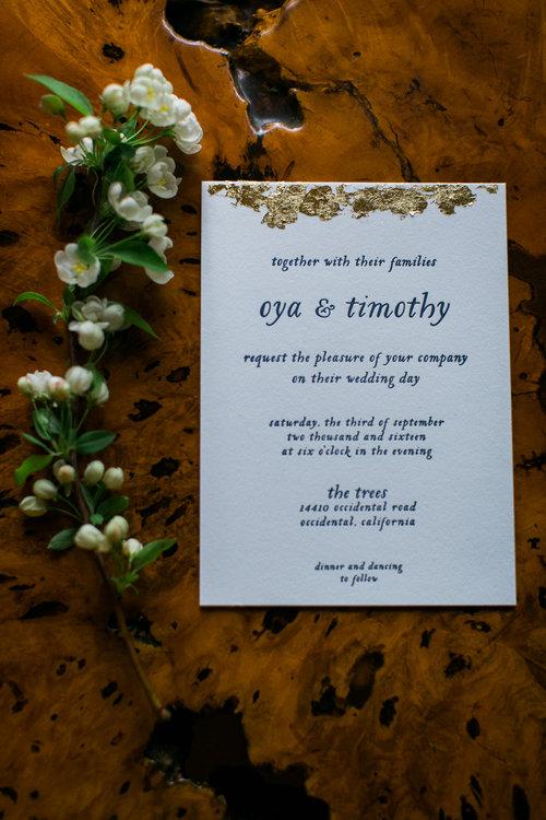 sonoma+county+wedding+collective+maria+villano+photography-24.jpg