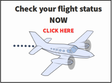 Flight Status Gray.PNG