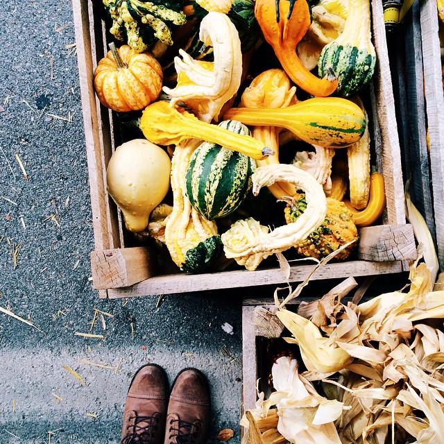 Fall festival via @DalenaVintage Instagram