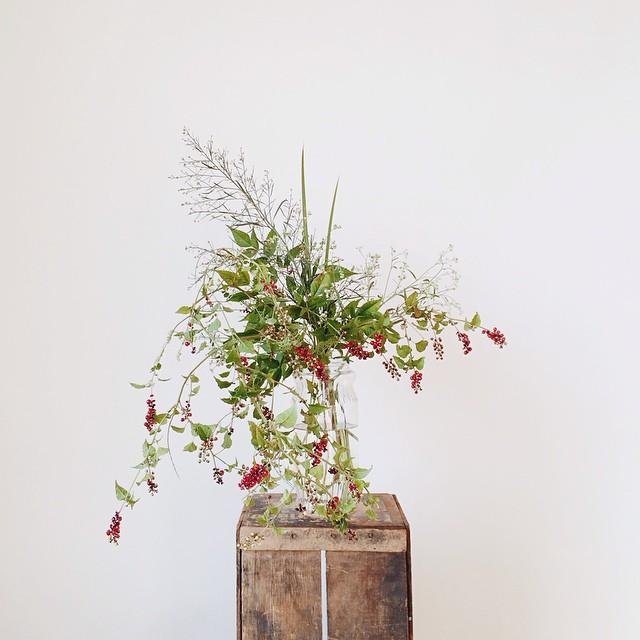 Foraged flora via @DalenaVintage Instagram
