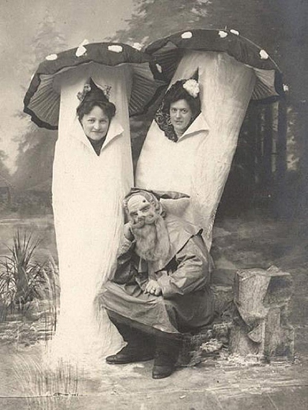 Vintage Halloween costumes, a gnome and mushrooms