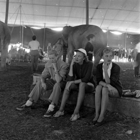 Ringling Bros. and Barnum & Bailey Circus, 1949. The LIFE Picture Collection/Getty Images