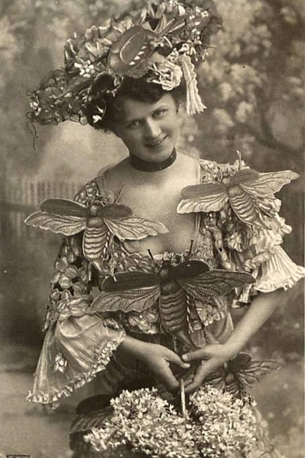 Vintage bee costume