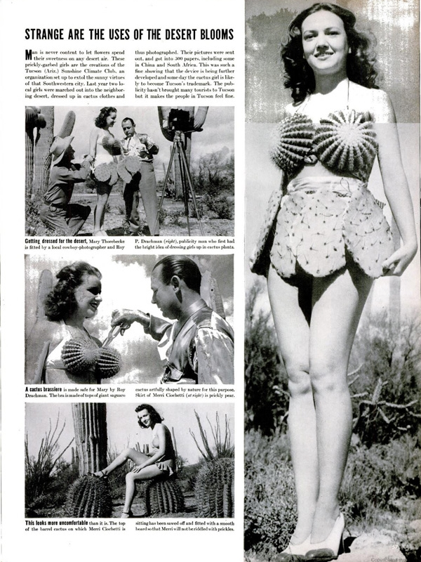 Looking for a vintage-inspired Halloween costume idea? How about making a 1950s style cactus bikini?