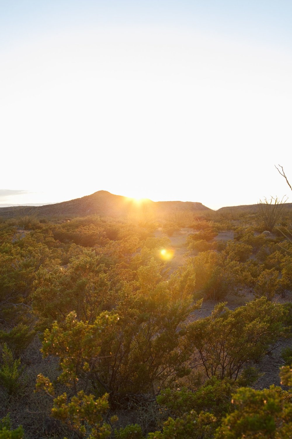 Sunset in the Chihuahuan Desert.