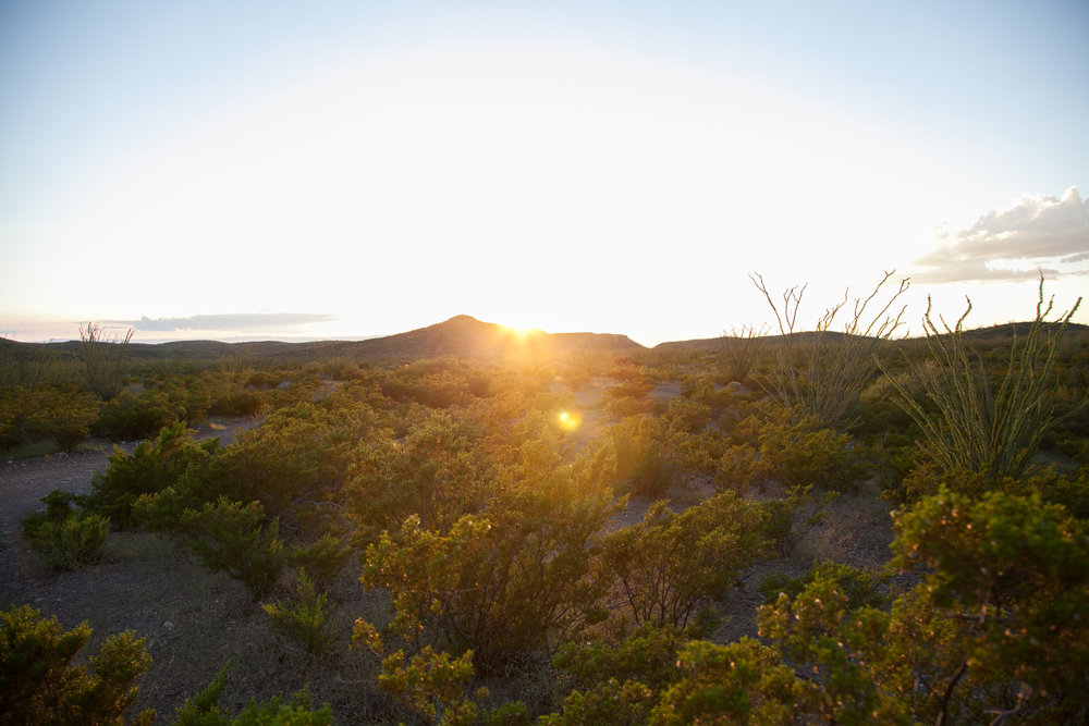 Exploring the Chihuahuan Desert with Dalena Vintage.