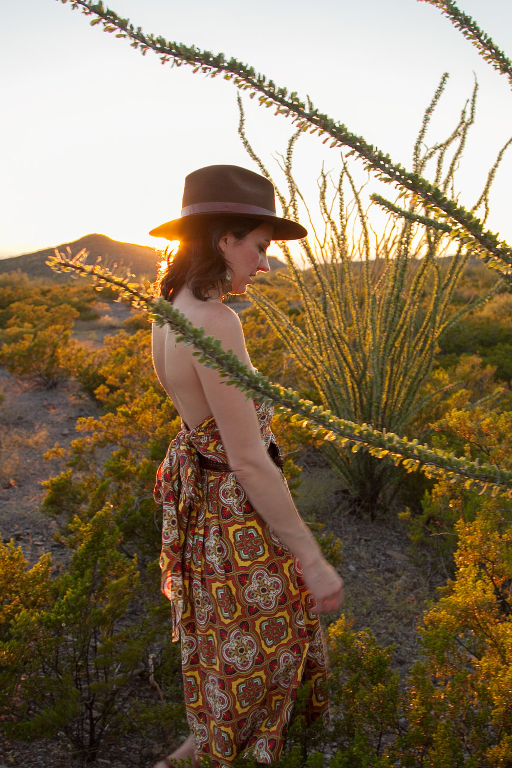 Ocotillo and vintage in the west Texas desert