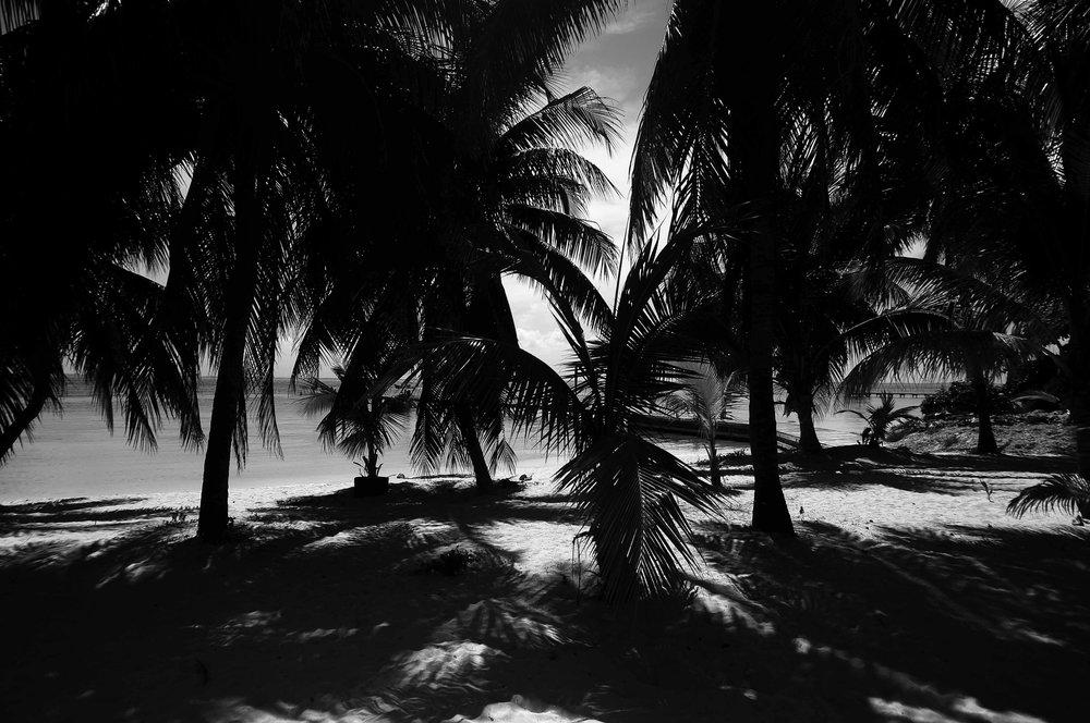 yucatan-018.jpg
