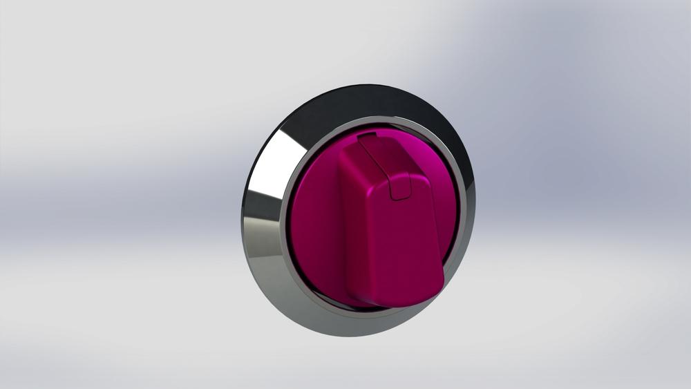 Bezel  concept pink.JPG