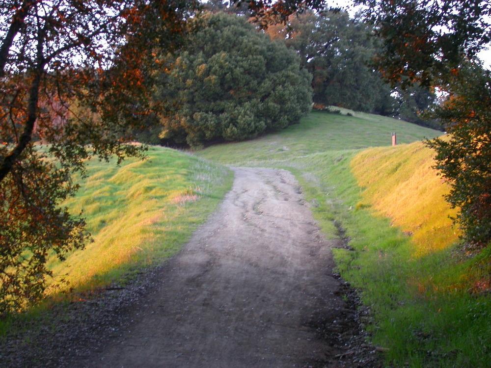 Ridge Path.JPG