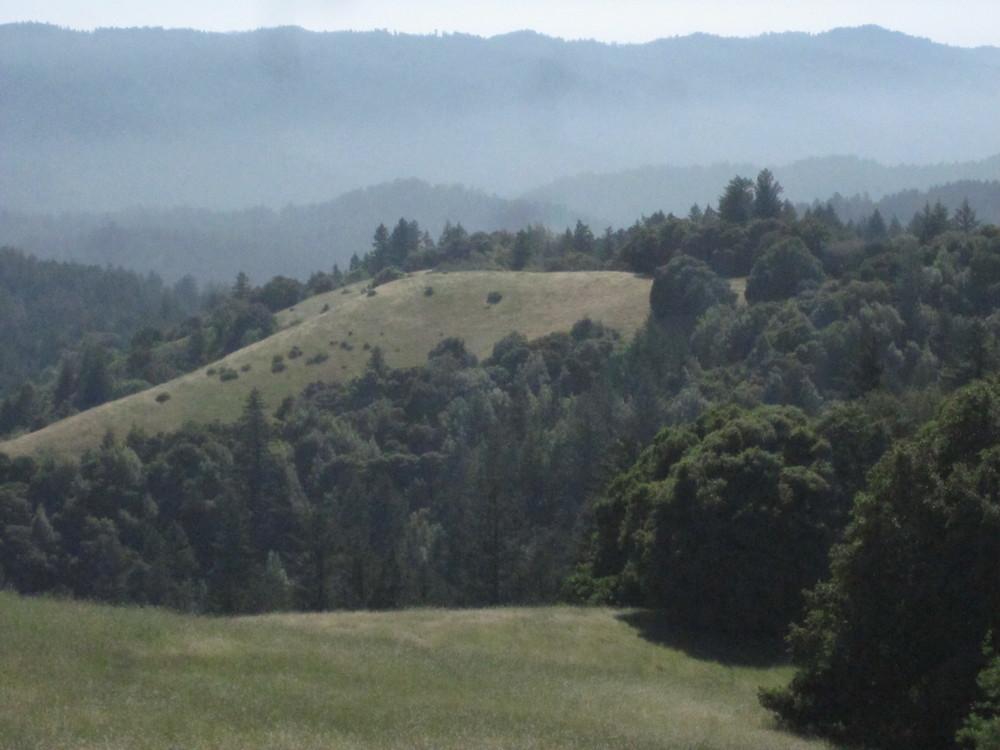Ridge Vista.JPG