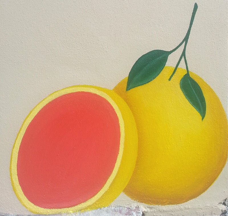 day-four-grapefruit-mural-panel-one-ana-livingston-fine-artist-clearwater-florida.jpg