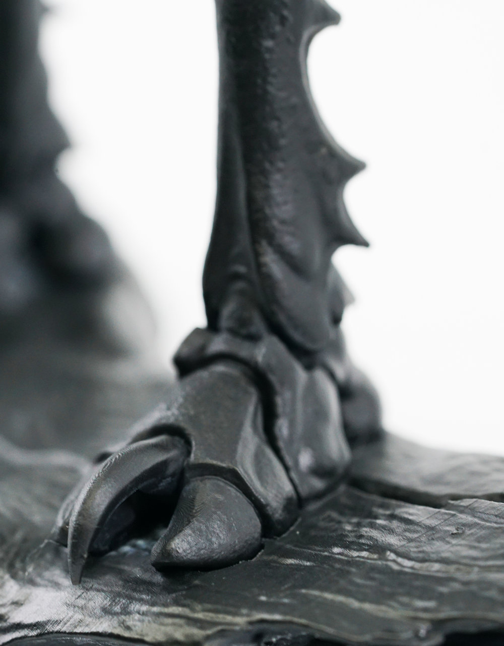 foot_001.jpg