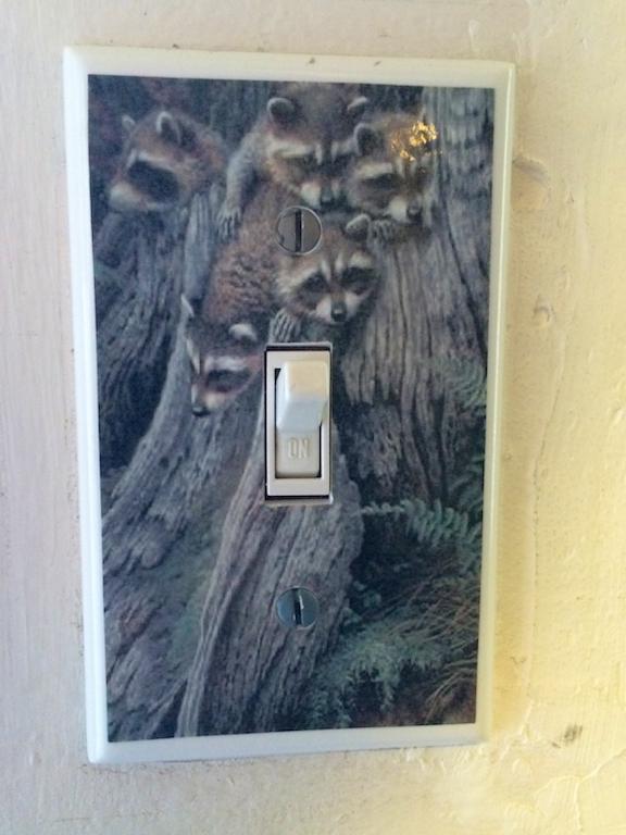 Raccoon Room switch plate.jpg
