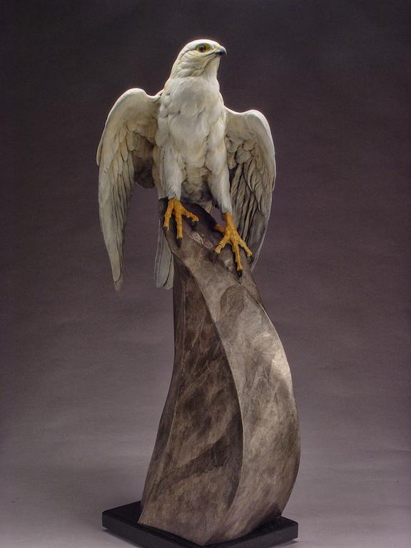 "Eugene Morelli's ""Arctic Tern"""