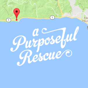 Malibu.png