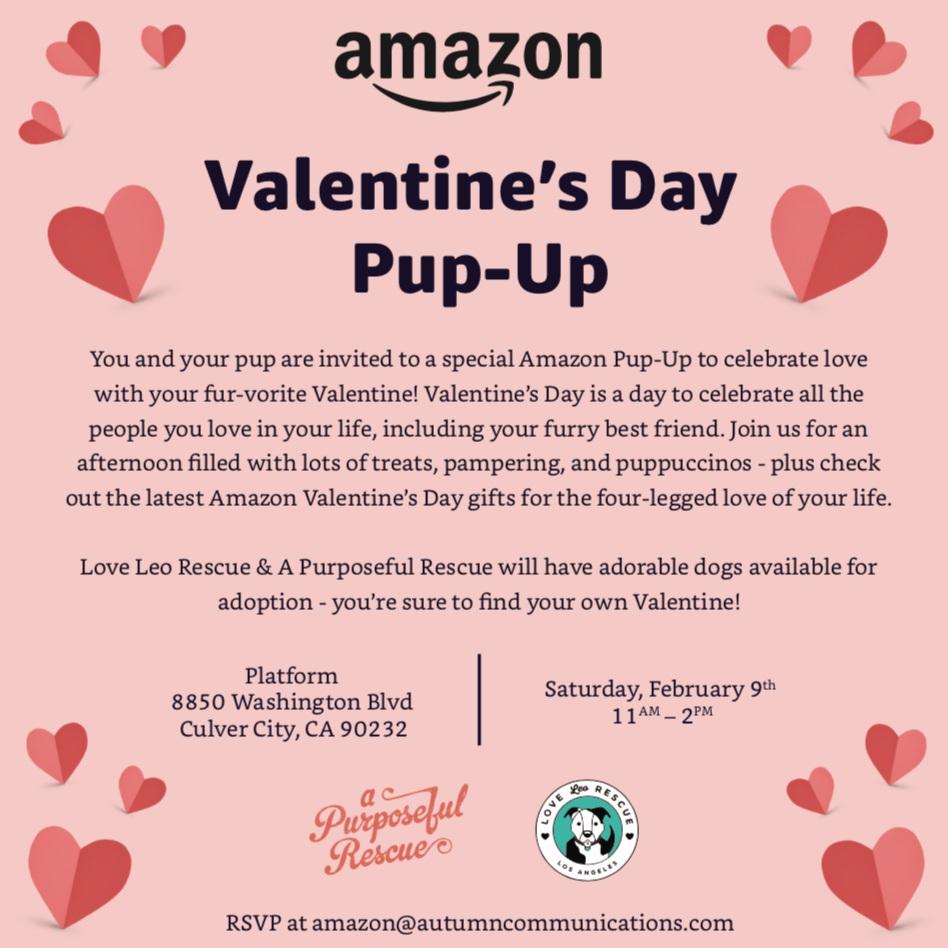 Amazon_Pup_Up.jpg