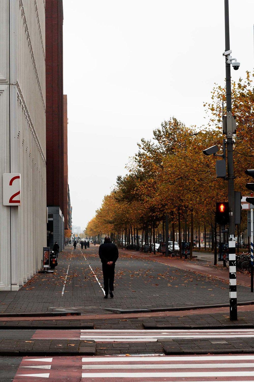 Tim_Allen_Rotterdam_3.jpg