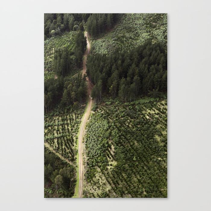 Tim_Allen_The-Path-The-Goal-Canvas.jpg