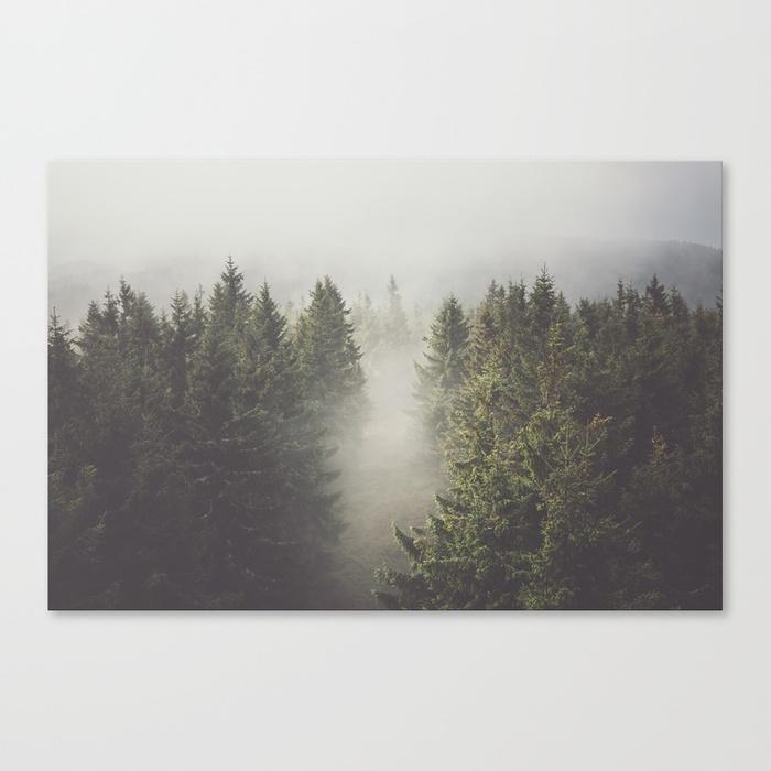 My misty way  by  EwKaPhoto