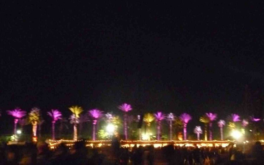 Coachella-2012-Palms-At-Night.jpg