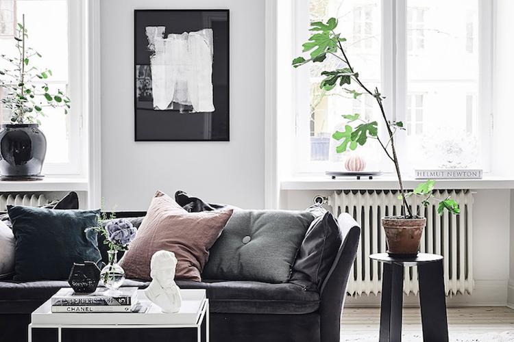 Living room 101. Photo:  Pinterest