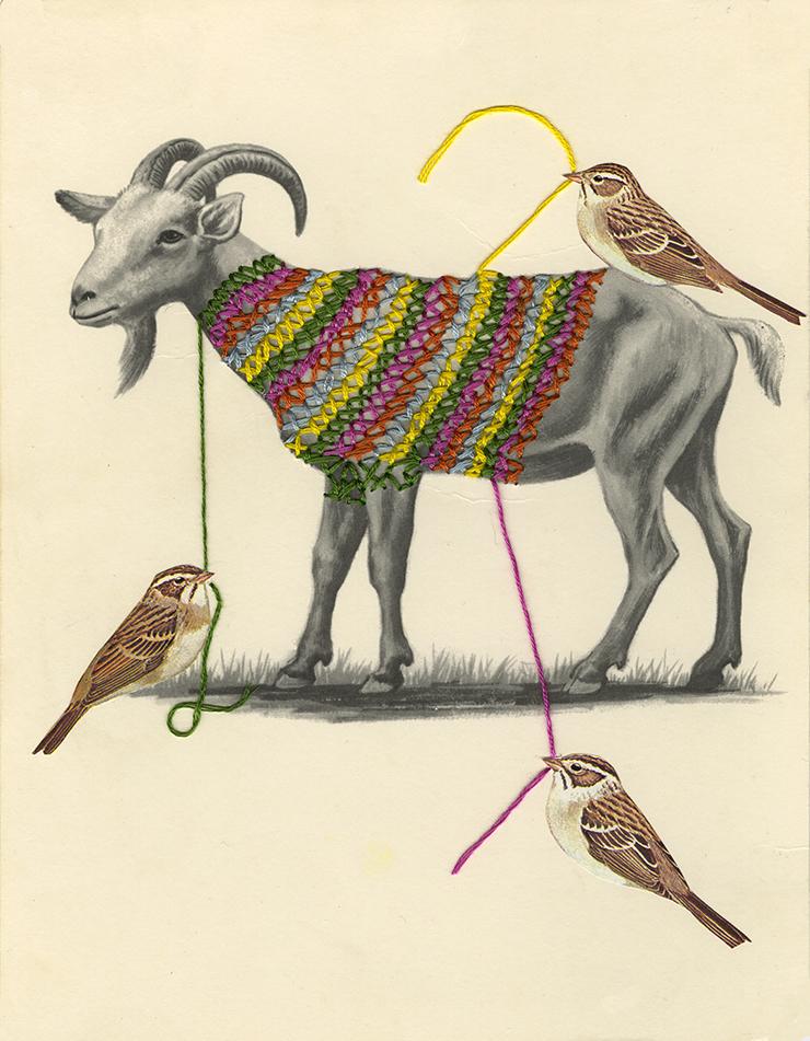 Yarn Bombing Sparrows