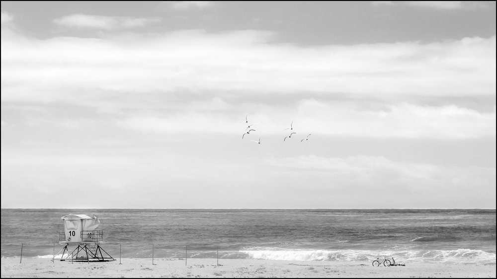 """Birds, Beach, Bike"""