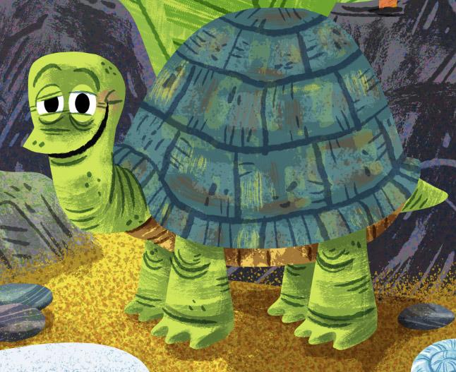 critter_turtle.jpg