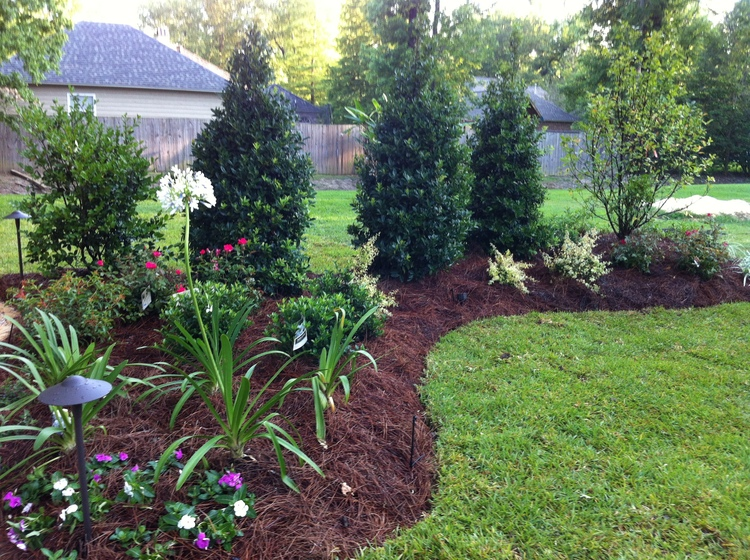 Lawn Care, Baton Rouge, LA - Greenscape Design